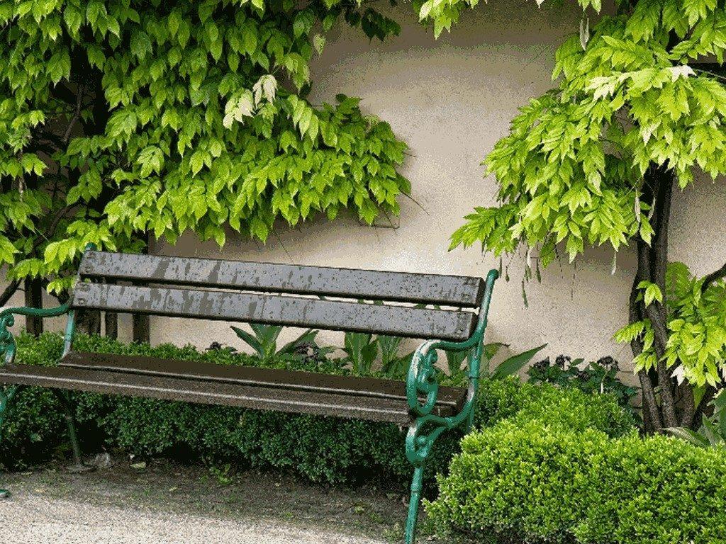 leicester-garden-design004
