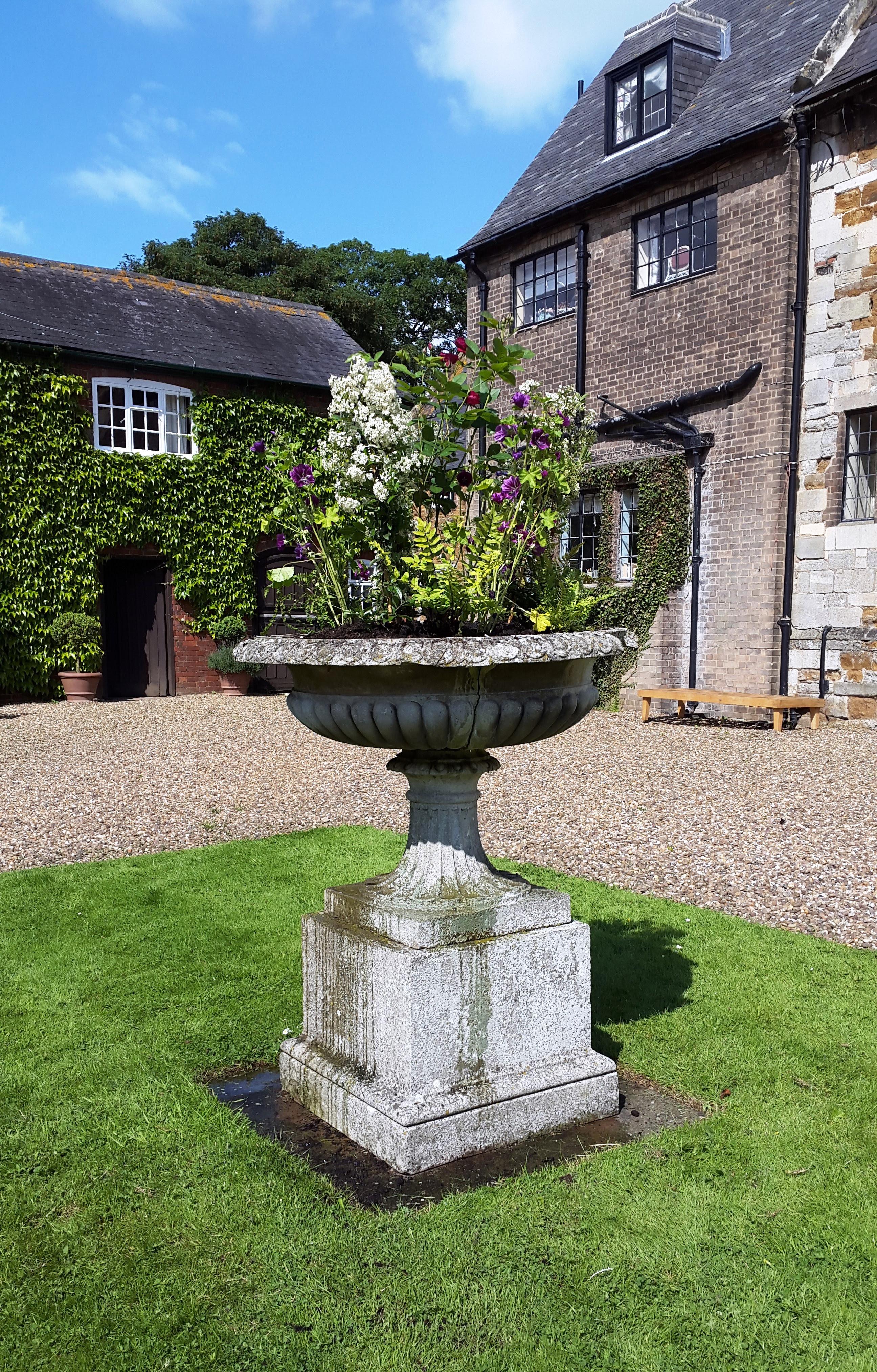 leicester_garden_design_ingarsby (5) | Leicester Garden Design