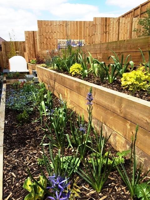 leicester_garden_design_market_harborough (7) | Leicester ...